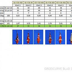 Een prognose maken qua lengte: afbeelding 2