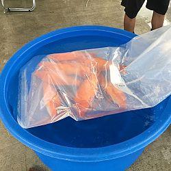 Exclusief shipment bij Momotaro: afbeelding 14