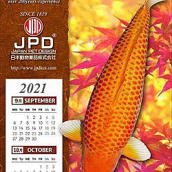 Gouden Maïs: afbeelding 2