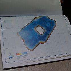 Het eendenmeer: afbeelding 8