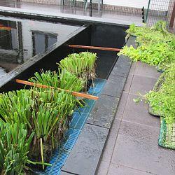 Hoe leg je een plantenfilter aan: afbeelding 4