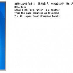 informatie oyakoi Hakubotan: afbeelding 2