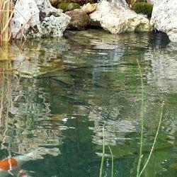 Interkoi goes Sicilië: afbeelding 3