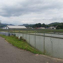 Japan dag 3: afbeelding 7