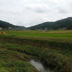 Japan dag 3: afbeelding 8