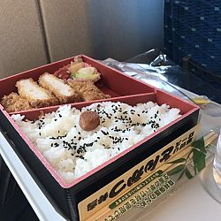 Japanreis april 2017: afbeelding 1