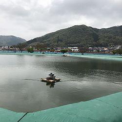 Japanreis april 2017: afbeelding 8