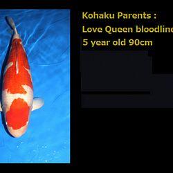 Love Queen van Momotaro: afbeelding 1