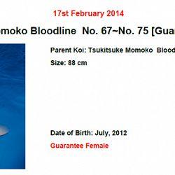Momotaro auction 17 februari - Sanke: afbeelding 3