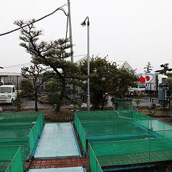 Narita: afbeelding 10