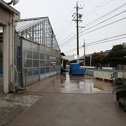 Narita: afbeelding 17