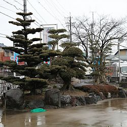 Narita: afbeelding 19