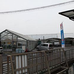 Narita: afbeelding 20