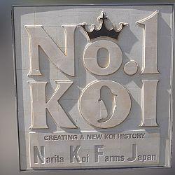 Narita Niigata Showa project: afbeelding 1