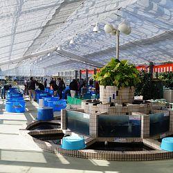 Narita Opensales: afbeelding 1