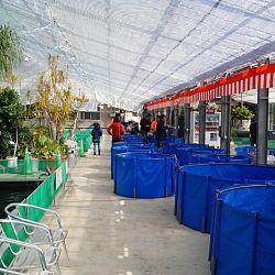 Narita Opensales: afbeelding 5