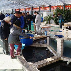 Narita Opensales: afbeelding 7