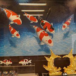 Narita Opensales: afbeelding 9