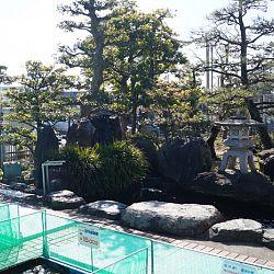 Narita Opensales: afbeelding 11