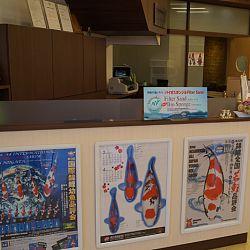 Narita Opensales: afbeelding 12