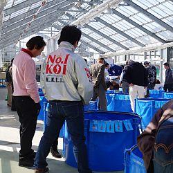 Narita Opensales: afbeelding 19