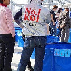 Narita Opensales: afbeelding 20