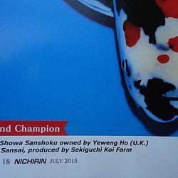 Nichirin magazine: afbeelding 7