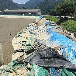 Nieuwsitem-live-Japan: afbeelding 2