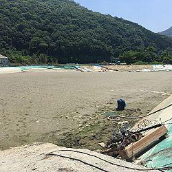 Nieuwsitem-live-Japan: afbeelding 7