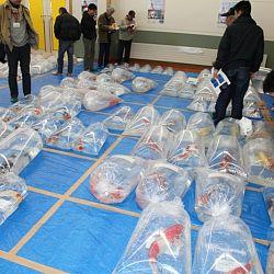 Niigata Veiling 14 maart: afbeelding 10