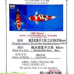Op zijn Japans: afbeelding 6