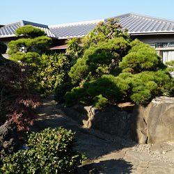 Overzicht van mijn Kyushu avontuur: afbeelding 12
