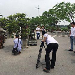 Queenkoi Vietnam : afbeelding 23