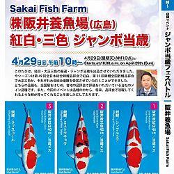 Super Jumbo Tosai Event: afbeelding 1