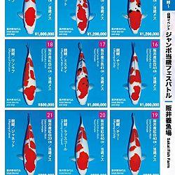 Super Jumbo Tosai Event: afbeelding 3