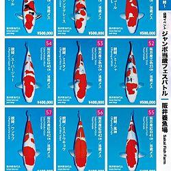 Super Jumbo Tosai Event: afbeelding 7