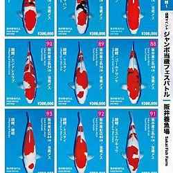 Super Jumbo Tosai Event: afbeelding 11