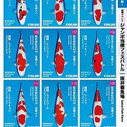 Super Jumbo Tosai Event: afbeelding 13
