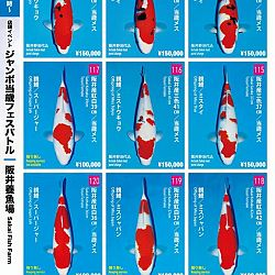 Super Jumbo Tosai Event: afbeelding 14
