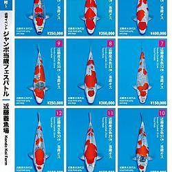 Super Jumbo Tosai Event: afbeelding 20