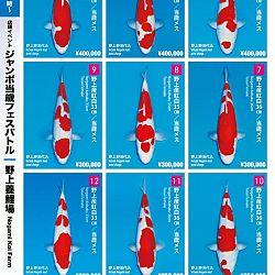 Super Jumbo Tosai Event: afbeelding 26