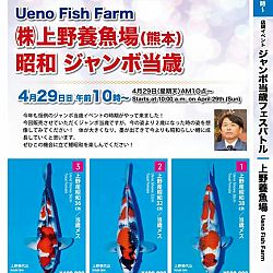 Super Jumbo Tosai Event: afbeelding 27