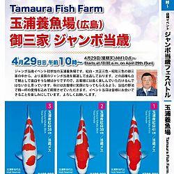 Super Jumbo Tosai Event: afbeelding 29