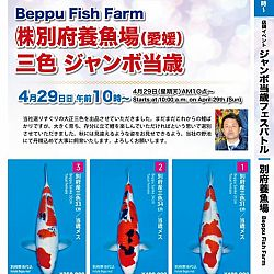 Super Jumbo Tosai Event: afbeelding 31