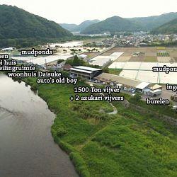 Waar verblijven de Momo's.: afbeelding 1