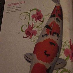 Wat is dat dit jaar met de tijdschriften: afbeelding 5
