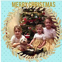 Zalig Kerstfeest: afbeelding 1