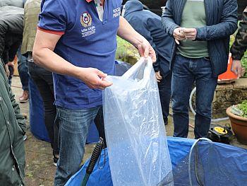 Interkoi Nederland: afbeelding 4